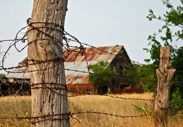 Fence Poster featuring the photograph Days Gone By by Lisa Moore
