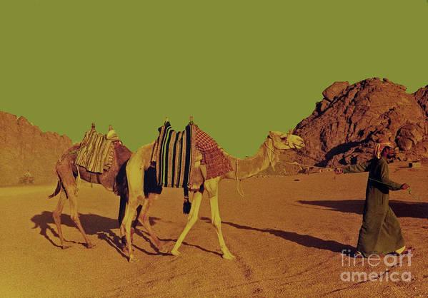 Egypt Poster featuring the photograph Desert Trek by Elizabeth Hoskinson
