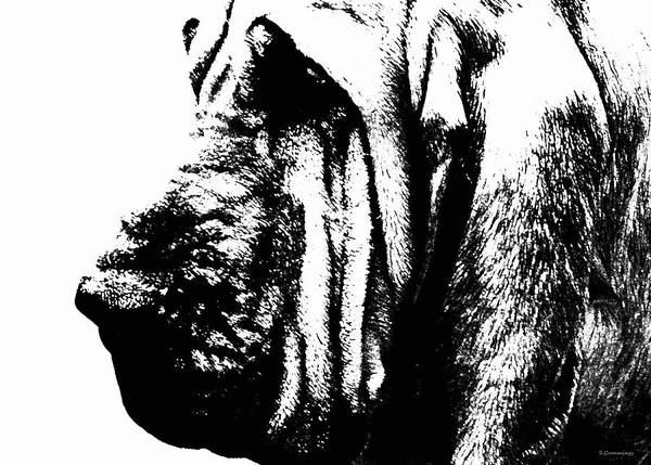 Bloodhound Poster featuring the painting Bloodhound - It's Black And White - By Sharon Cummings by Sharon Cummings