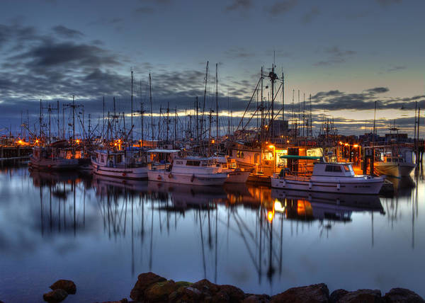 Water Poster featuring the photograph Blue Hour by Randy Hall