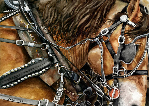 Horse Poster featuring the painting Buckskin by Nadi Spencer
