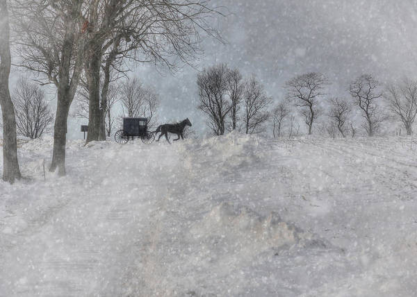 Winter Poster featuring the photograph Happy Holidays From Pa by Lori Deiter