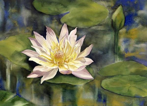 Waterlily Poster featuring the painting Waterlily by Alfred Ng