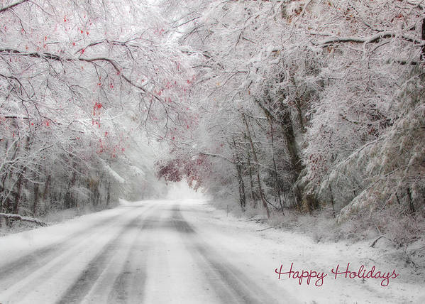 Happy Holidays Poster featuring the photograph Happy Holidays - Clarks Valley by Lori Deiter
