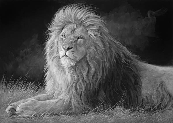 Lion Poster featuring the painting Pleasant Breeze - Black And White by Lucie Bilodeau
