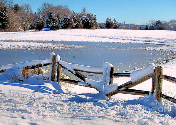 Winter Poster featuring the photograph Winter Gate by Janice Drew