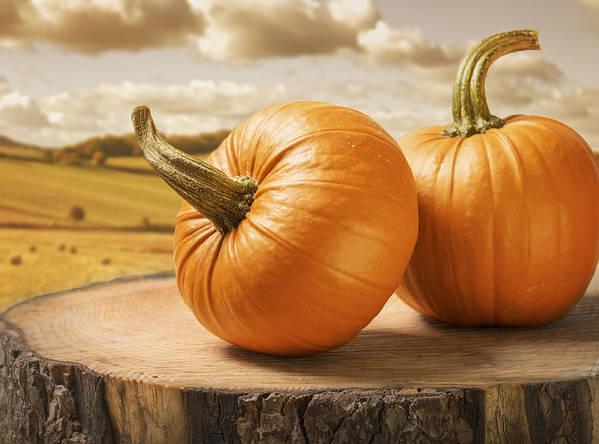 Pumpkin Poster featuring the photograph Pumpkins by Amanda Elwell