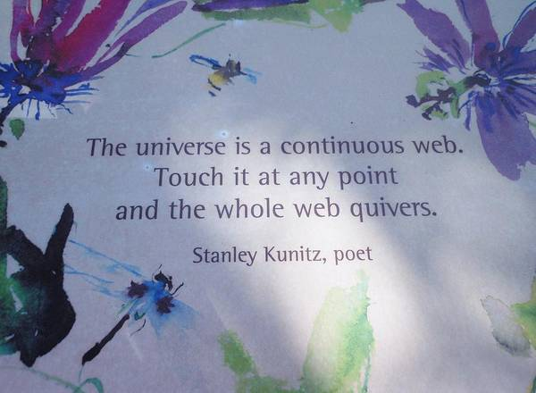 Poem Poster featuring the photograph The Universe by Kay Gilley