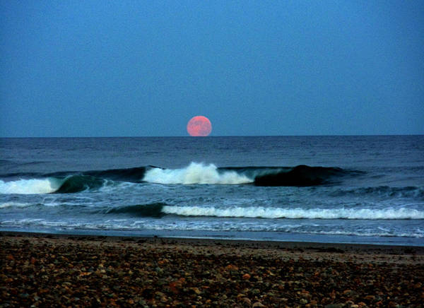 Moon Poster featuring the photograph Moonrise Rexham Beach by Malcolm Lorente