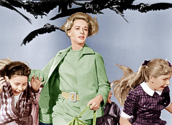 1960s Fashion Poster featuring the photograph The Birds, Tippi Hedren Center, 1963 by Everett