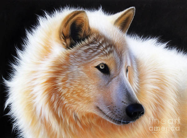 Acrylic Poster featuring the painting Nala by Sandi Baker