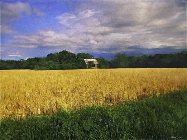 Barn Poster featuring the photograph Stormy Old Barn In Wheat Field 2 by Anna Louise