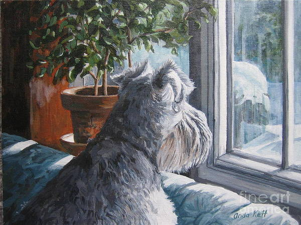 Schnauzer Poster featuring the painting Waiting Patiently by Anda Kett