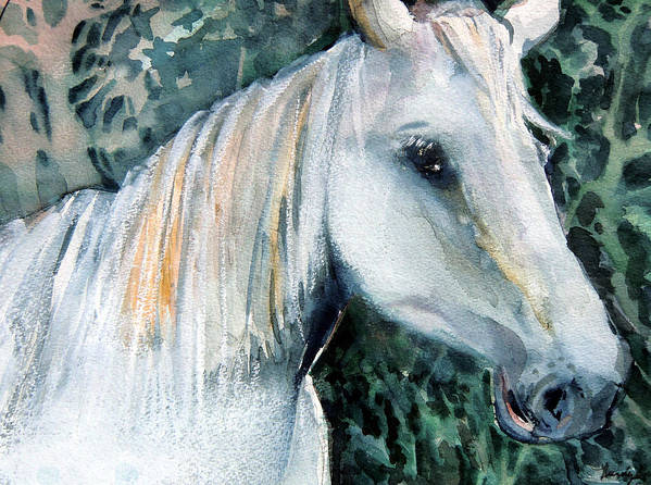 Pastel Painting Poster featuring the painting White Horse by Mindy Newman