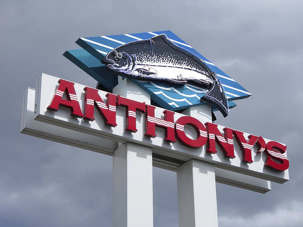 Anthony's Poster featuring the photograph Anthonys Trout Sign by Daniel Hagerman