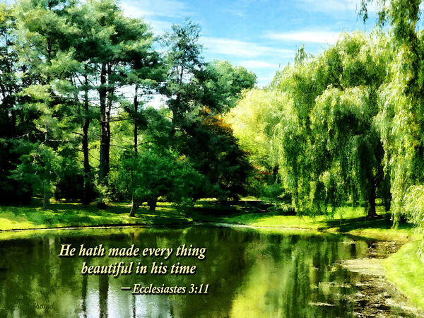 Religious Poster featuring the photograph Ecclesiastes 3 11 He Hath Made Everything Beautiful by Susan Savad