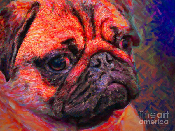 Animal Poster featuring the photograph Pug 20130126v2 by Wingsdomain Art and Photography