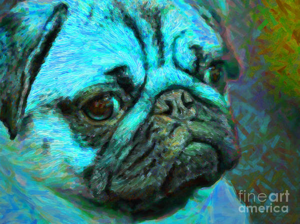 Animal Poster featuring the photograph Pug 20130126v5 by Wingsdomain Art and Photography