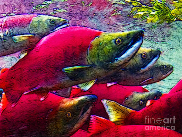 Big Fish Poster featuring the photograph Salmon Run by Wingsdomain Art and Photography