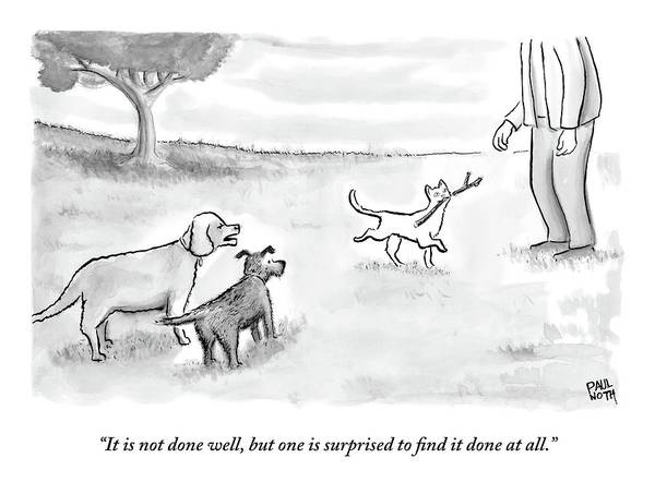Cats Poster featuring the drawing Two Dogs Criticize A Cat Who Has Just Retrieved by Paul Noth