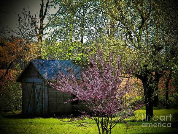 Ohio Poster featuring the photograph Daddys Old Shed In The Spring by Joyce Kimble Smith