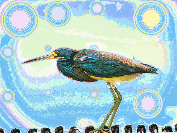 Bird Poster featuring the digital art Bird Contemplates The Cosmos by Wendy J St Christopher