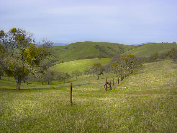 Landscape Poster featuring the photograph East Ridge Trail Barbed Wire by Karen W Meyer