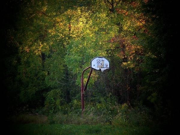 Basketball Poster featuring the photograph Forgotten Hoop by Michael L Kimble