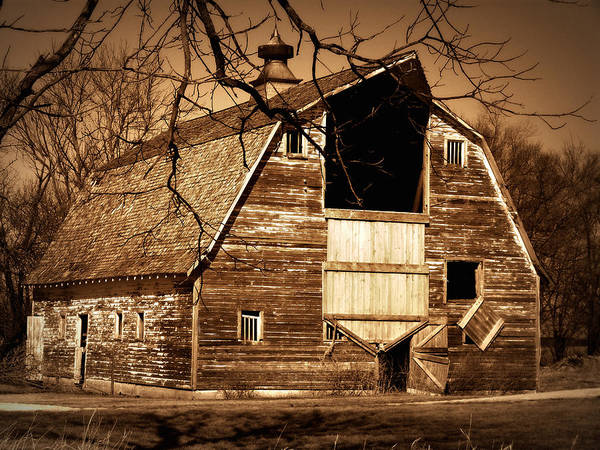 Barn Poster featuring the photograph In Need by Julie Hamilton