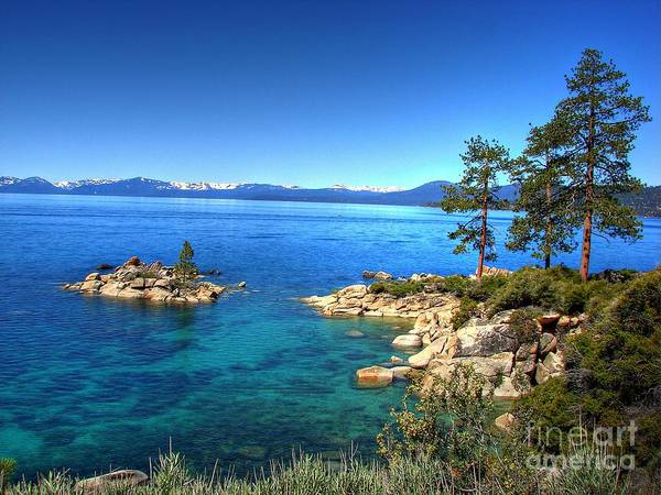 Lake Tahoe State Park Poster featuring the photograph Lake Tahoe State Park Nevada by Scott McGuire