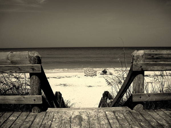 Beach Scene Poster featuring the photograph Life Is A Beach by Susanne Van Hulst