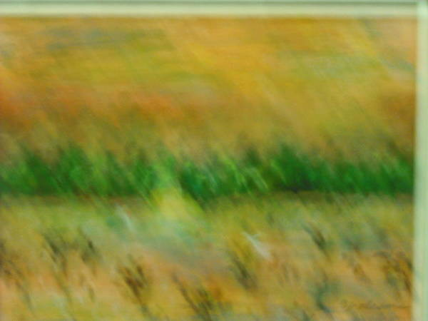 Water Poster featuring the painting Morning On The Lake With Whooping Cranes by BJ Abrams