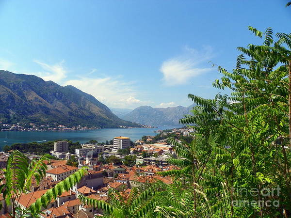 Adriatic Sea Poster featuring the photograph Sea View From Kotor by Elizabeth Fontaine-Barr