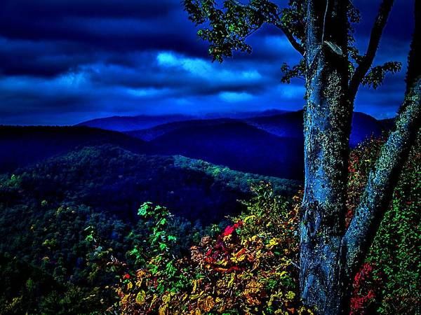 Smokey Mountains Poster featuring the photograph Smokey Mountain Still Life by William Jones