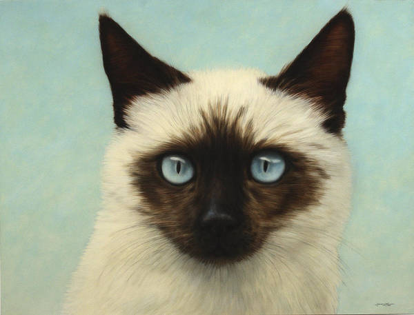 Cat Poster featuring the painting Machka by James W Johnson