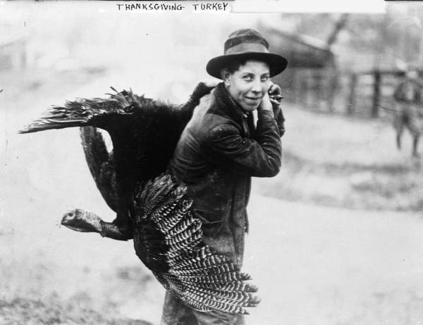 1910s Poster featuring the photograph Young Man With Thanksgiving Turkey by Everett