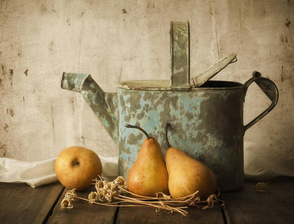 Pear Poster featuring the photograph Rustica by Amy Weiss