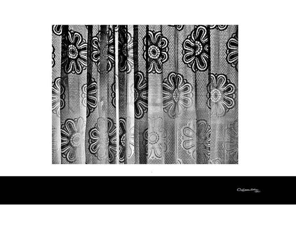 Curtained Window Poster featuring the digital art Curtained Window by Xoanxo Cespon