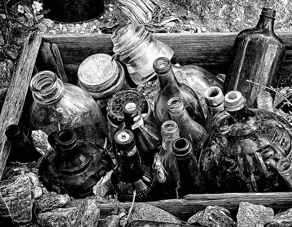 Borrego Springs Poster featuring the photograph Bottle Garden by Ron Regalado
