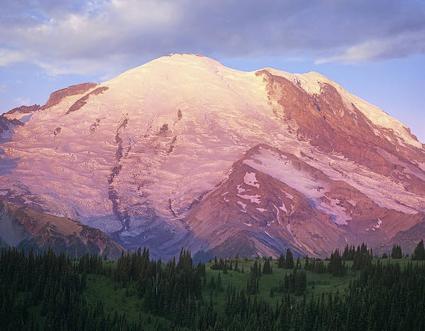 00177104 Poster featuring the photograph Mount Rainier At Sunrise Mount Rainier by Tim Fitzharris