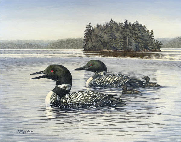 Common Loon Poster featuring the painting Family Outing by Richard De Wolfe