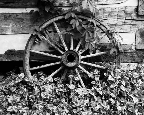 Big Wheel Bw Poster featuring the photograph Big Wheel Bw by Mel Steinhauer