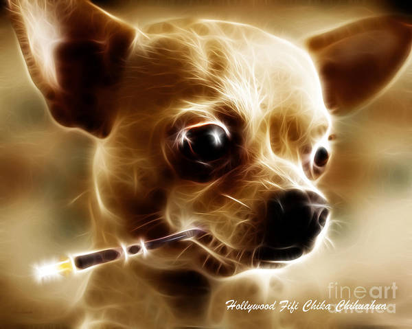 Animal Poster featuring the photograph Hollywood Fifi Chika Chihuahua - Electric Art - With Text by Wingsdomain Art and Photography