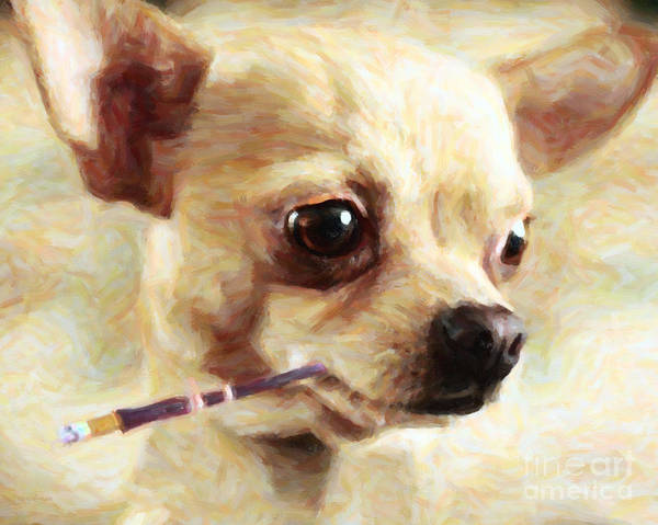 Animal Poster featuring the photograph Hollywood Fifi Chika Chihuahua - Painterly by Wingsdomain Art and Photography