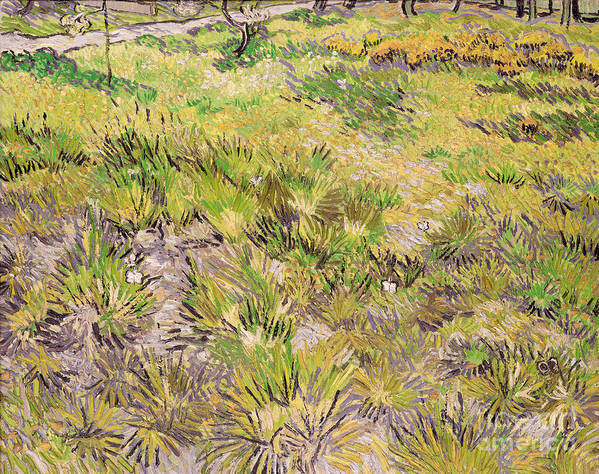 Landscape Poster featuring the painting Meadow With Butterflies by Vincent Van Gogh