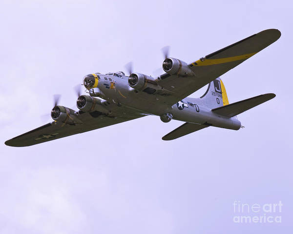 Boeing Poster featuring the photograph B-17g Liberty Belle Approach 8x10 Special by Tim Mulina