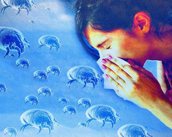 Dermatophagoides Sp. Poster featuring the photograph Dust Mite Allergy, Conceptual Artwork by Hannah Gal