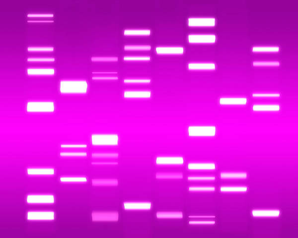 Dna Poster featuring the digital art Dna Magenta by Michael Tompsett