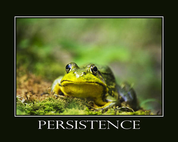 Persistence Poster featuring the photograph Persistence Inspirational Motivational Poster Art by Christina Rollo