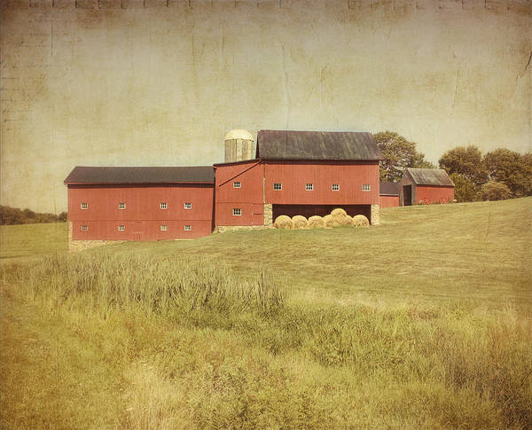 Farm Poster featuring the photograph Down On The Farm by Kim Hojnacki